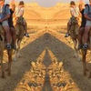 Camel Ride, Bedouin Dinner and Star Gazing in Sinai