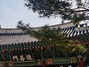Changdeokgung Palace Photos
