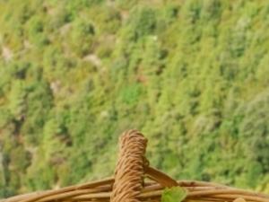 Cinque Terre: hiking & wine Photos