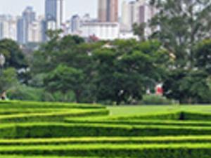 City tour of Curitiba Photos