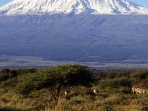 Climb Mt. Kilimanjaro via Rongai Route for 6 days / 5 nights Photos