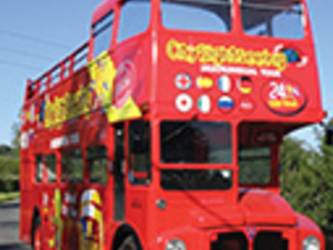 Combo: Dublin Citysightseeing Bus 2 days + Guiness Storehouse Photos