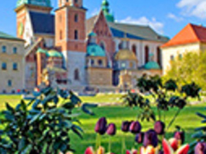 Cracow City tour Photos