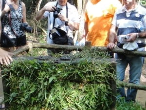 Cu Chi Tunnels by Boat - Discover The Mystery of The Tunnels Photos