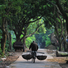 Cuc Phuong national park - Real nature lovers from Hanoi
