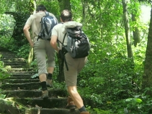 Cuc Phuong National Park Photos