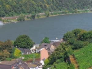 Day Tour to the Rhine Valley Photos