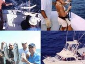 Deep Sea Fishing Trip (4h) Photos