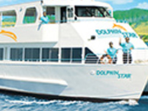 Dolphin Watching Cruises Photos