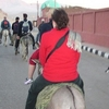 Donkey Ride to valley of kings