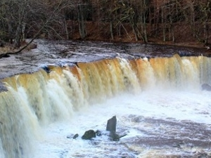 Estonian Waterfalls Photos