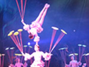 Evening China Acrobatics And Shanghai Tour Photos
