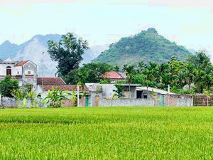 Farming Experience with Homestay Photos