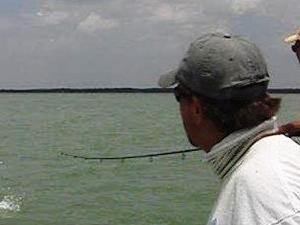 Fishing excursion Miami Photos