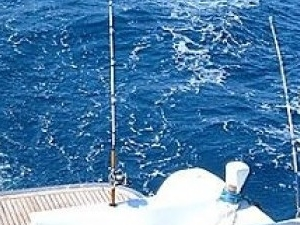 Fishing Tour in Hurghada by boat Photos