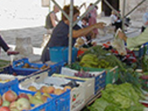 Formentor and Sineu market Photos