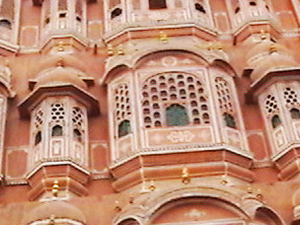 Full Day Jaipur Pink city tour with Lunch and Elephant Ride. Photos