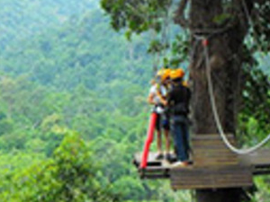 Full Day Morning Canopy Adventure Tour Photos