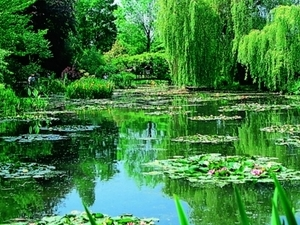 Giverny - GY Photos