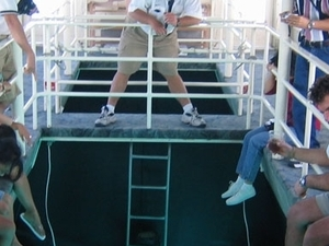 Glass bottom boat excursion from Sharm Photos