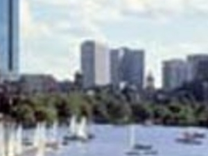 Go Boston Card Photos