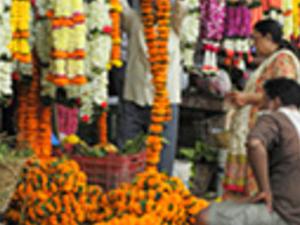 Half Day Mumbai Highlights Photos