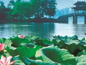 Hangzhou Picturesque Day Tour - West Lake, Ling Yin Temple and More