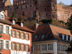 Heidelberg & Half Day to the Rhine Valley Combination Photos