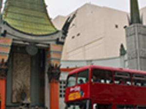 Hop On Hop Off Bus Tour Photos