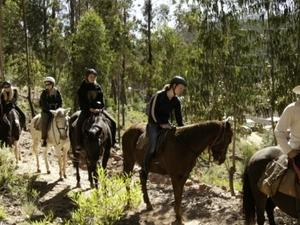 Horseback Riding Photos