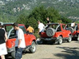 Jeep Safari Photos