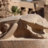 Karnak and Luxor Temples Day Tour