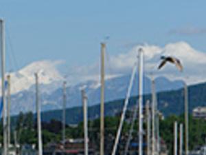 Lausanne city tour Photos