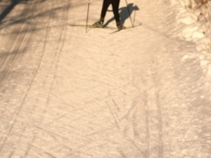 LEARN TO SKI IN TALLINN Photos