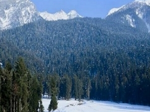 Majestic India / Kashmir - Paradise on Earth Photos