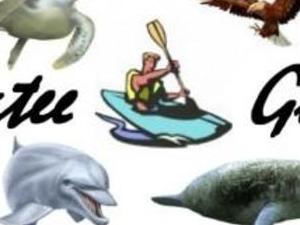 Manatee Kayak Tour Photos