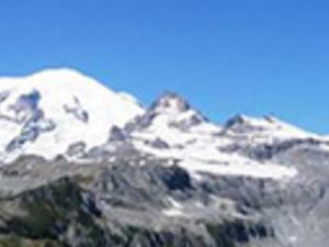 Mt. Rainier National Park Photos