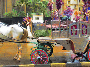 Mumbai Night Victoria Heritage Tonga Ride Tour in Colaba Area followed by dinner Photos