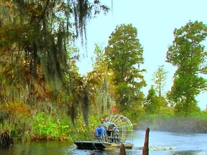 One Hour Airboat Tour Photos