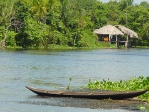 Orinoco Delta (3 days) - Indian Villages and Lush Green Forests Photos