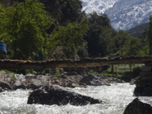 Ourika Valley & Atlas Mountains Full Day Group Tour/ Lunch Photos