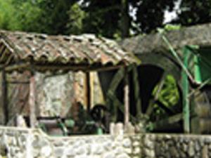 Paradise Hacienda & Chinche Foot - Caña de Azucar Museum. Photos