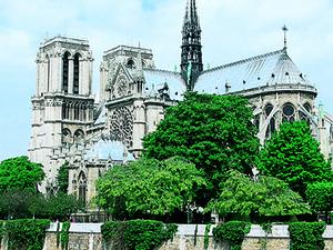Paris Discovery - MF Photos