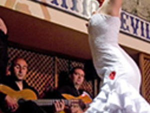 Patio Sevillano flamenco show Photos
