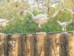 Private Full day India's best Planed City Chandigarh's Tour with Rock Garden and Lunch Photos