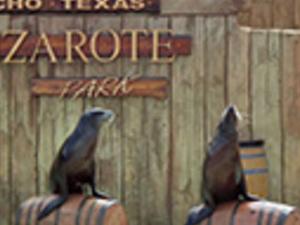 Rancho Texas Animal & Splash Park Photos