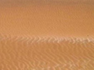 Sandboarding Photos