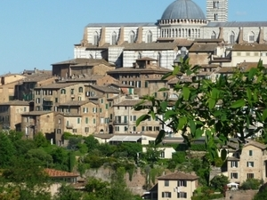 Siena: medieval jewel Photos