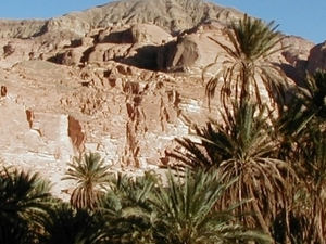 Sinai Uncovered - 2 day camel & jeep desert safari Photos