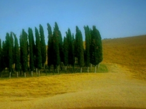 Small group Pienza and Montepulciano tour from Siena Photos